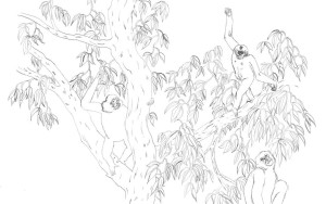 les singes dans l'arbre
